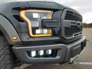 2017 Ford Raptor Rigid Industries LED lighting (BUILD#83702)