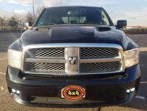 2010 DODGE RAM 1500 RIGID INDUSTRIES DUAL D-SERIES LED LIGHTS (BUILD#85054)